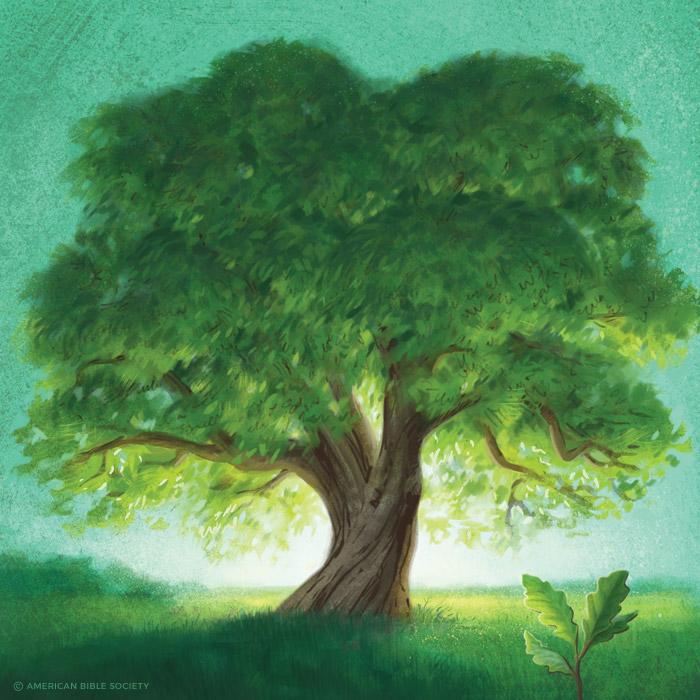 ian_dale_hwt_tree1